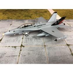 WITTY F-18D HORNET