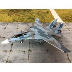 WITTY F-14A TOMCAT