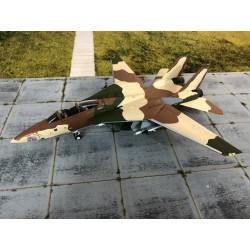 Witty F-14A TOMCAT 1-72