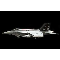Witty F-18  1-72